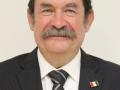 ING. FRANCISCO JAVIER OLDENBOURG CEBALLOS