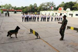 Demostración de elementos caninos en la XX Zona Militar