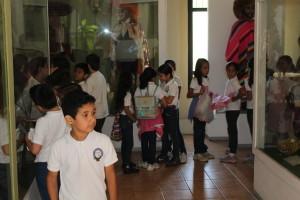 Museo 6 Oct 2015